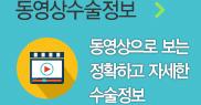 영상 수술 정보 코너